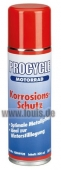 PROCYCLE CORROSION